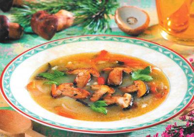 Zupa z leśnych grzybów
